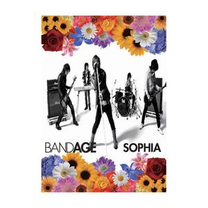 【DVD】BANDAGE