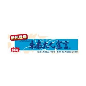 【TOUR 2013 未来大人宣言】マフラータオル(ブルー) ¥2500➡¥2000キャンペーン価格!